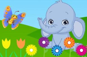 פיל אחד שונה ומיוחד