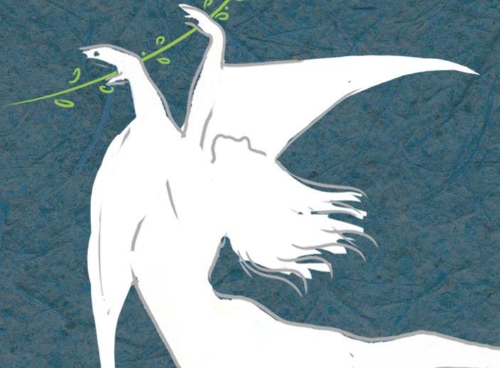 מופע מחול: תיבת נוח